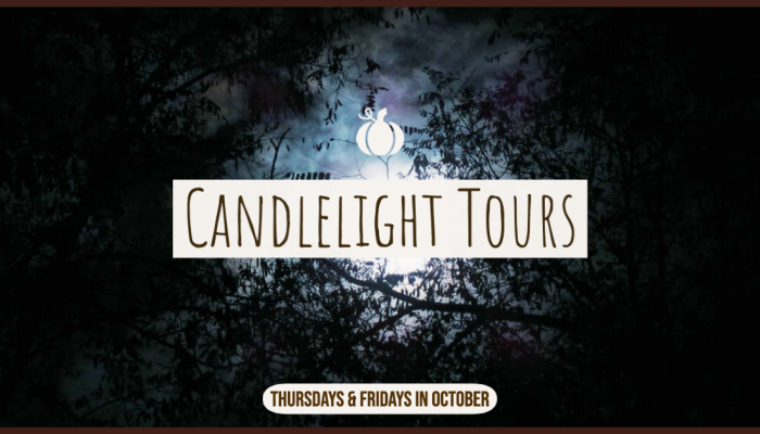 Schenectady Candlelight Tours