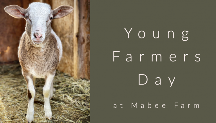 mabee young farmers day
